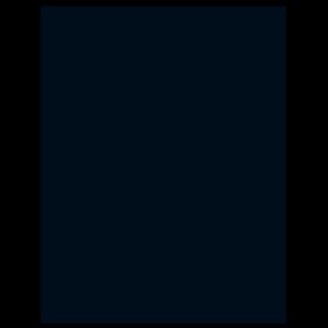 Phoenix Camp Academy